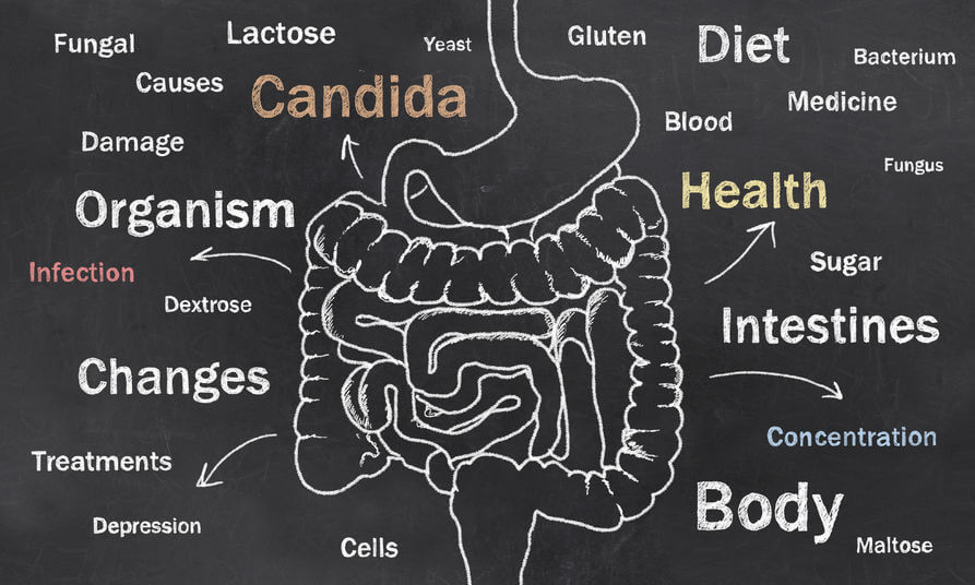 Gut Fermentation Syndrome – What It Is, and How to Deal With It