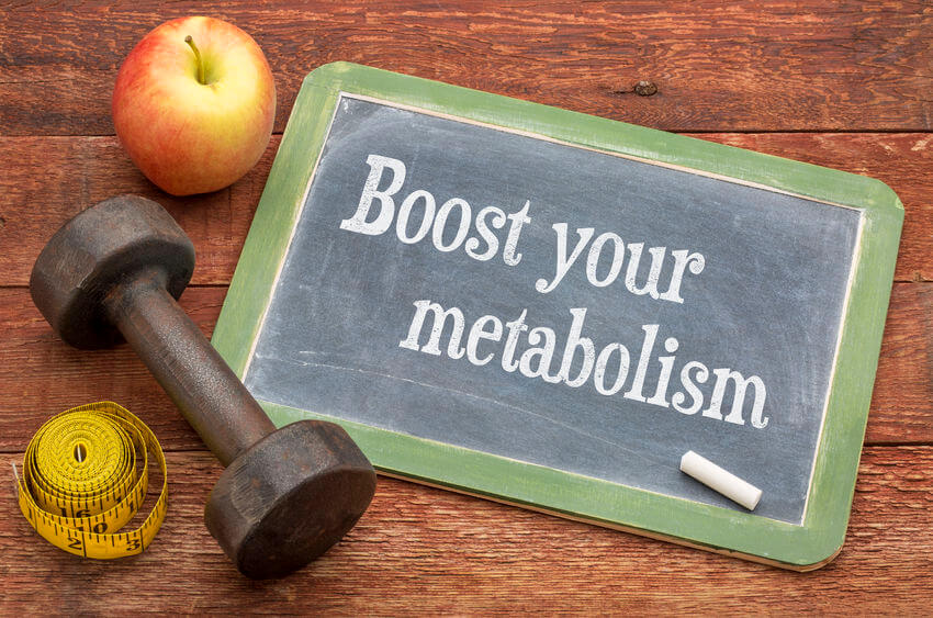 [News]: Study Shows How Prebiotics Boost Metabolism